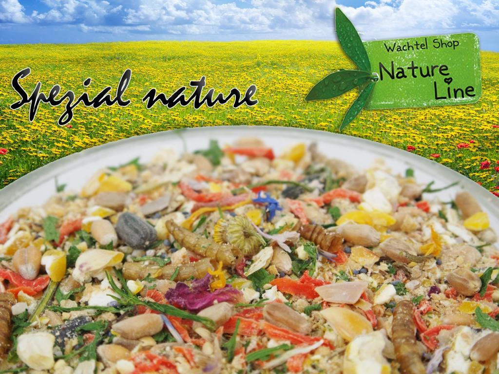 Wachtelfutter Spezial nature Wachtelfutter Wachtel Futter